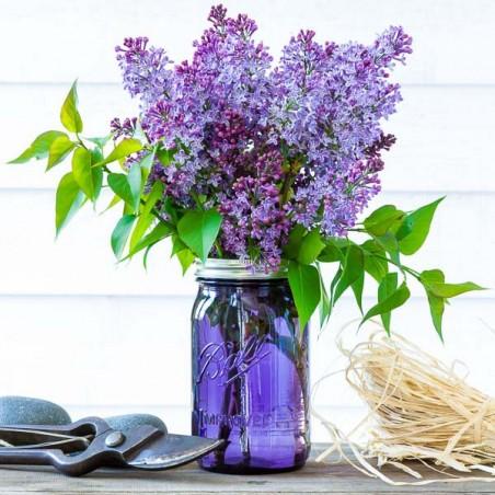 Bocal Mason Jar Wide HERITAGE Violet - 32oz - Made in USA