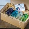 Box collector Mason Jars 16oz - (16 oz.) - GREEN